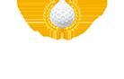 Palmer Colonial Logo